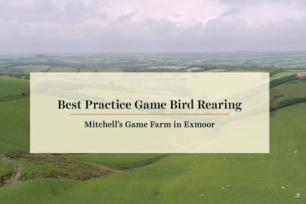 Best Practice Game Bird Rearing